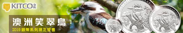 Kookaburra 2019